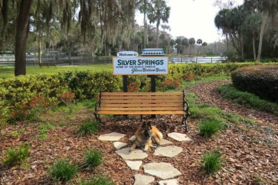 Silver Springs 1768 b